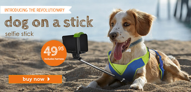 Click HERE to buy your dog selfie stick today!